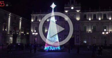 Catania live albero