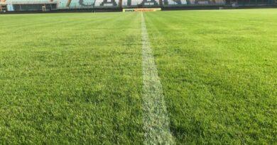 Calcio Catania stadio Massimino campo