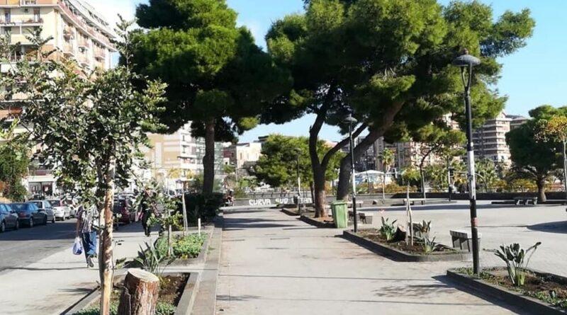 Catania live 2000 alberi piazza europa