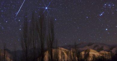 Geminidi stelle cadenti dicembre