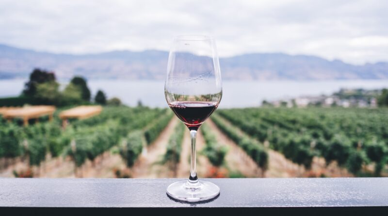 Bicchiere di vino doc Sicilia