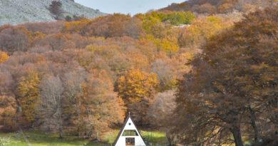 Oggi comincia l'autunno: tutti i suoi colori da ammirare anche in Sicilia
